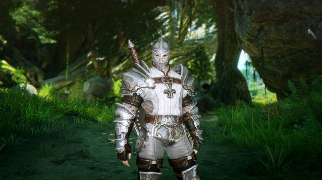 Воин Astellia Online