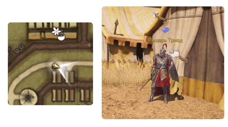 Расположение рыцаря Триода